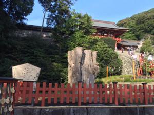 Tsurugaoka271020